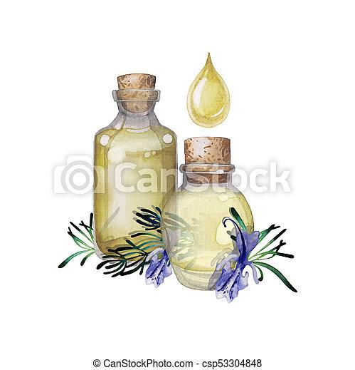 Watercolor rosemary oil - csp53304848