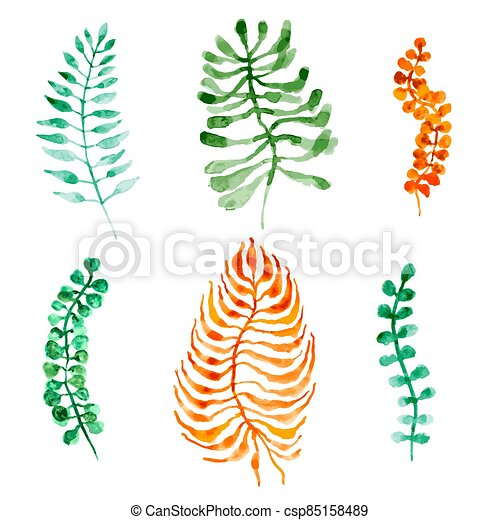 Watercolor set of colorful autumn leaves isolated on white background. - csp85158489