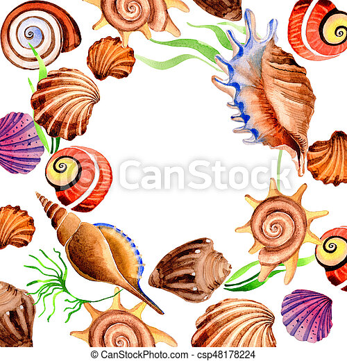 Watercolor summer beach seashell tropical elements frame, underwater creatures. - csp48178224