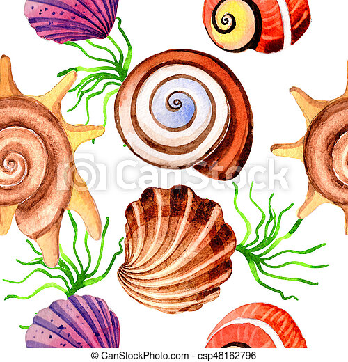 Watercolor summer beach seashell tropical elements pattern, underwater creatures. - csp48162796