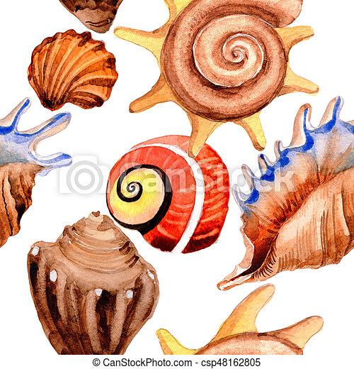 Watercolor summer beach seashell tropical elements pattern, underwater creatures. - csp48162805