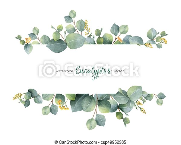 Watercolor Vector Green Floral Banner With Silver Dollar