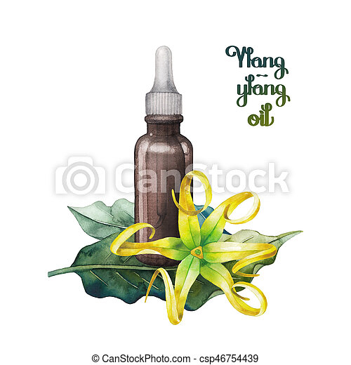 Watercolor ylang ylang oil hand painted bottle leaves and flowers watercolor ylang ylang oil csp46754439 mightylinksfo