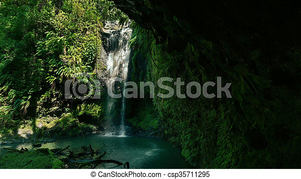 Waterfall in a rain forest. - csp35711295