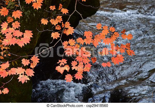 Waterfall in autumn - csp29418560