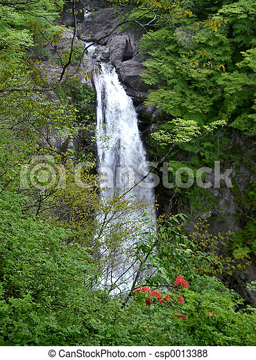Waterfall in forest - csp0013388