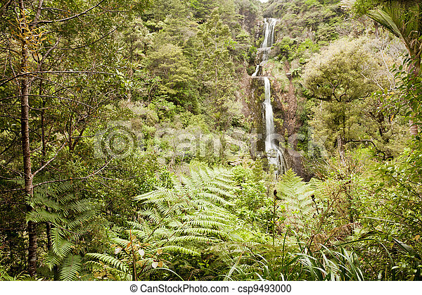 Waterfall in lush Forest Waitakere, New Zealand