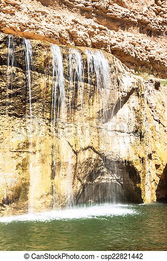 Waterfall in mountain oasis Chebika, Tunisia, Africa - csp22821442