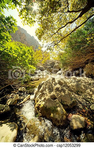 waterfall in the forest - csp12053299