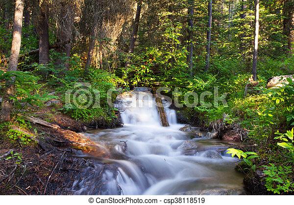 Waterfall Landscape. - csp38118519