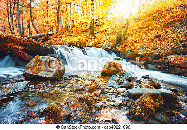 Waterfall on the river in forest - csp40221696