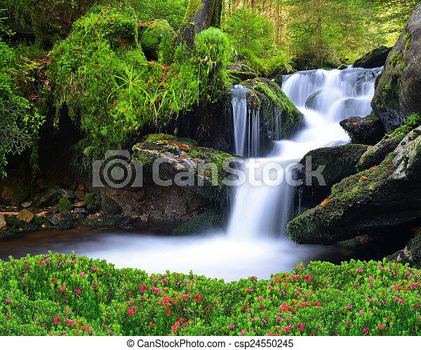 Waterfall - csp24550245