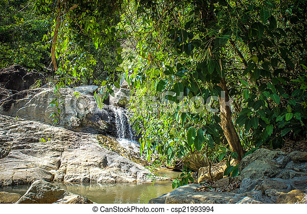Waterfall with pool in tropical jungle, Na Muang, Koh Samui - csp21993994
