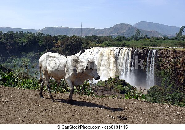 Waterfalls in Ethiopia - csp8131415