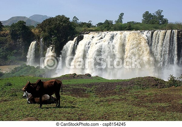 Waterfalls in Ethiopia - csp8154245