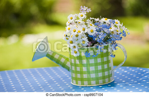 Watering can with daisy flowers - csp9907104
