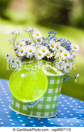 Watering can with daisy flowers - csp9907110