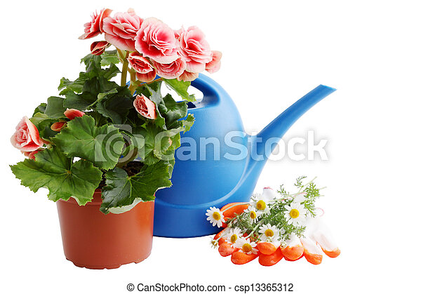 watering can with flowers - csp13365312