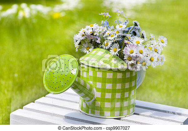 Watering can with flowers - csp9907027