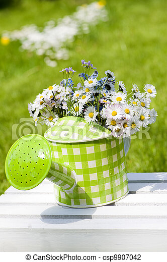 Watering can with flowers - csp9907042