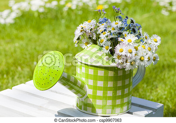 Watering can with flowers - csp9907063