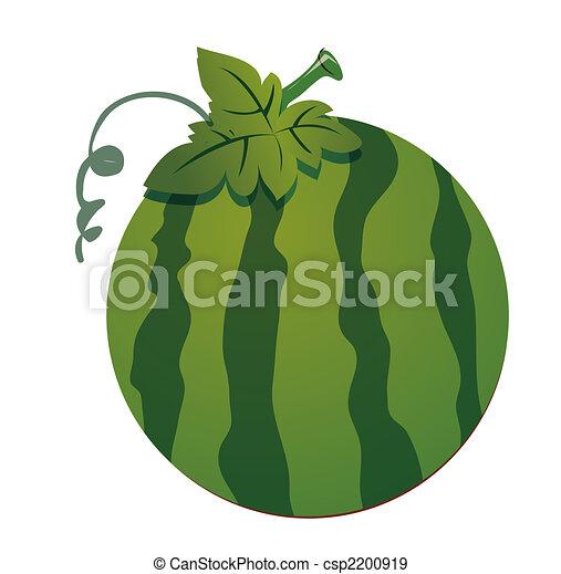 Watermelon - csp2200919