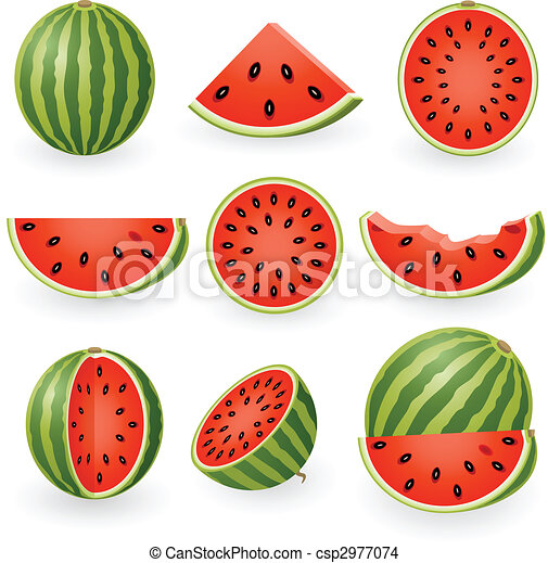 Watermelon - csp2977074