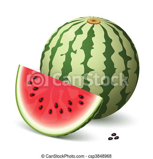 Watermelon - csp3848968