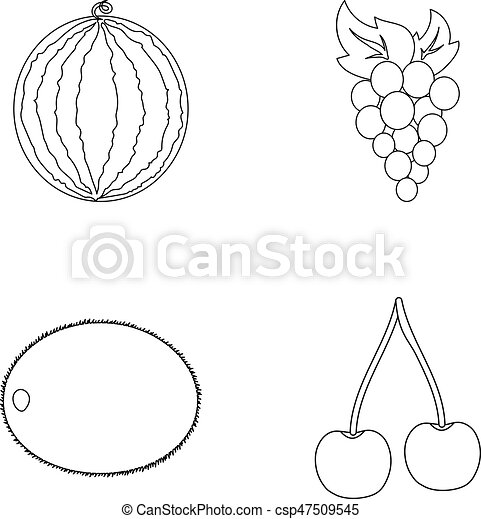 Watermelon Grapes Cherry Kiwi Fruits Set Collection Icons In
