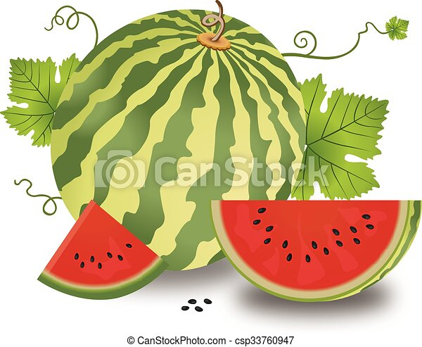 Watermelon, illustration - csp33760947