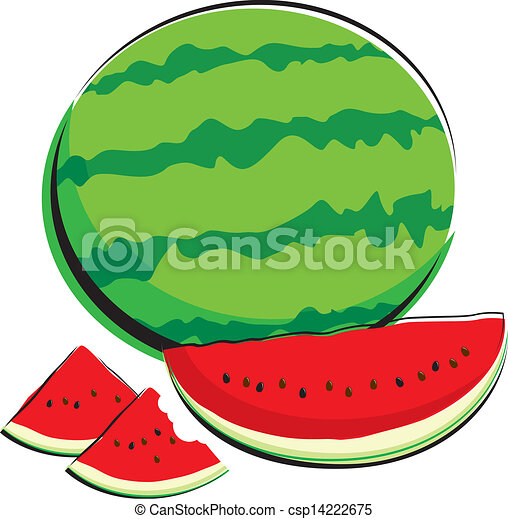 Watermelon  - csp14222675