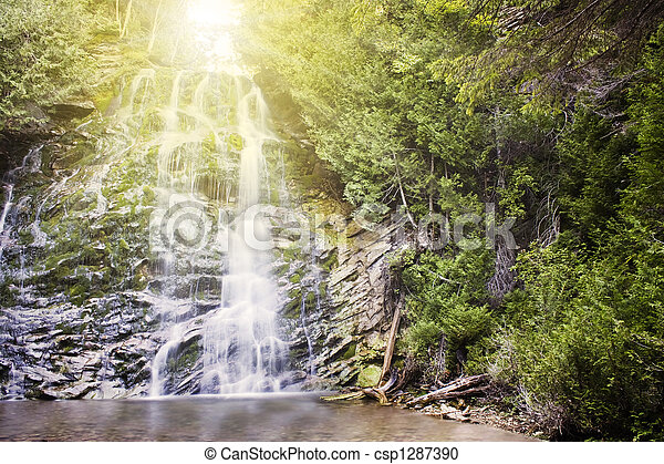 waterval, bos - csp1287390