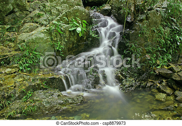 waterval, bos - csp8879973