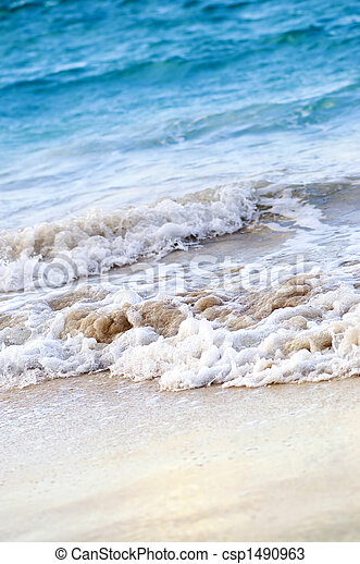 Waves breaking on tropical shore - csp1490963