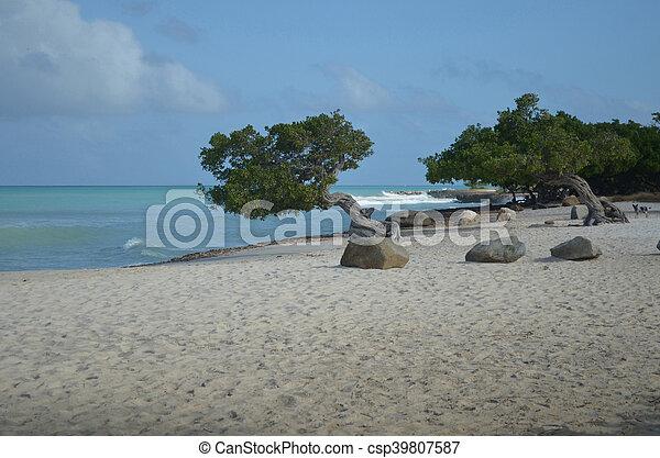 Waves Crashing Off Eagle Beach in Aruba - csp39807587