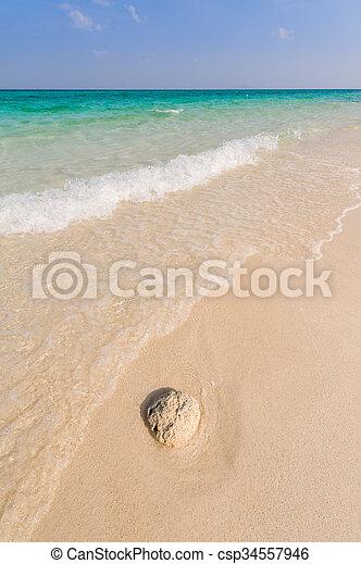 Waves crashing on beautiful resort beach - csp34557946