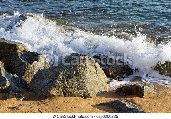 waves crashing - csp8200225