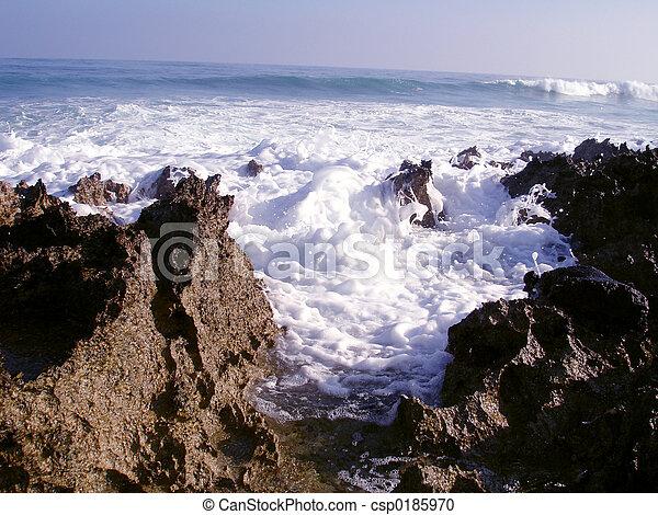 Waves Crashing - csp0185970
