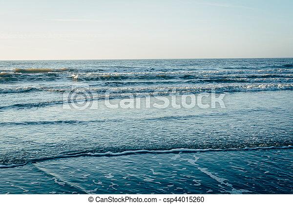 Waves in the Atlantic Ocean, in Folly Beach, South Carolina. - csp44015260