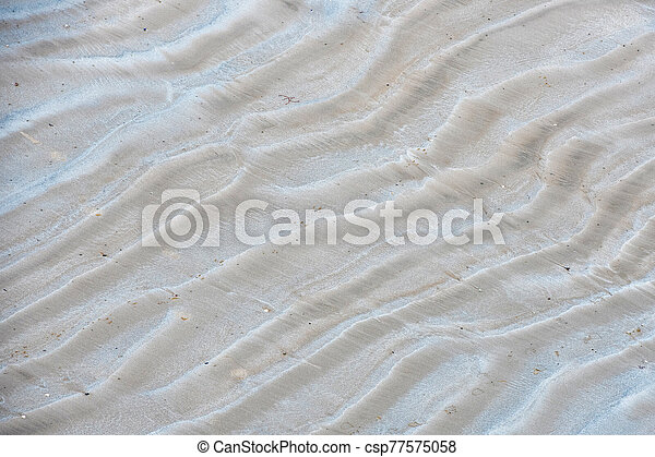 waves in the beach sand - csp77575058