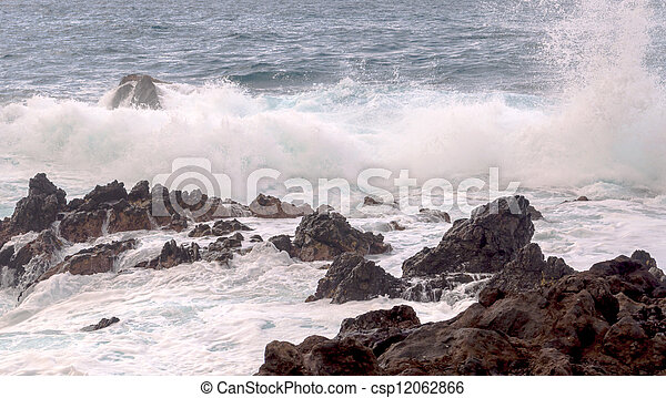Waves in the sea - csp12062866