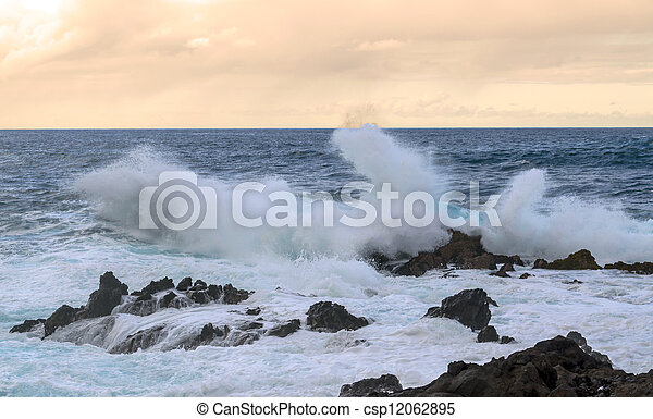 Waves in the sea - csp12062895