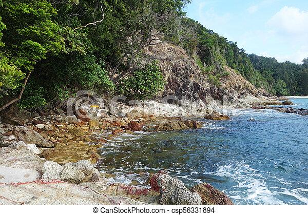 Waves on stone beach - csp56331894