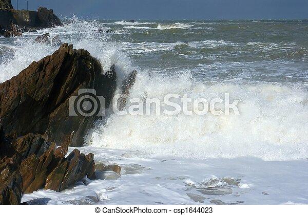 Waves - csp1644023