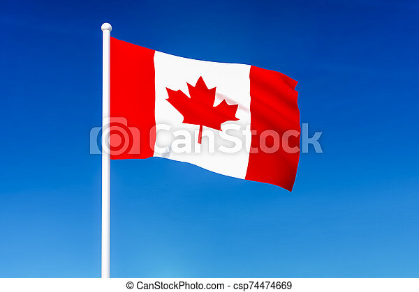 Waving flag of Canada on the blue sky background - csp74474669