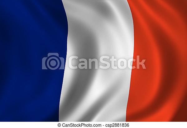 wavy French flag - csp2881836