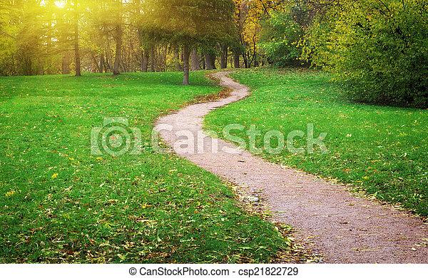 Way in yard - csp21822729