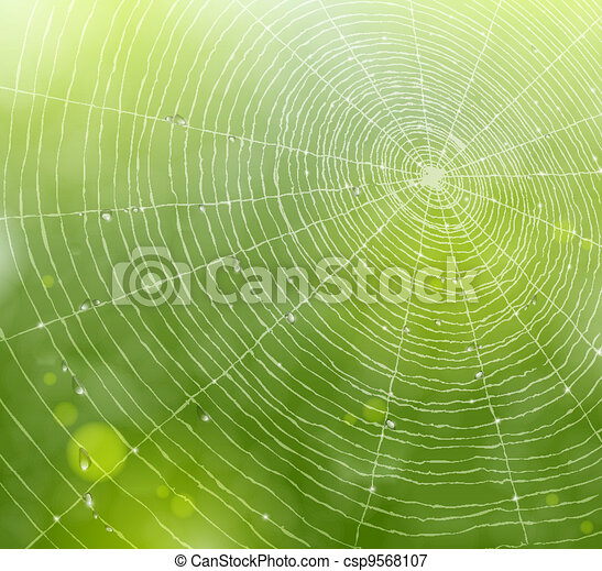 Web of natural background - csp9568107