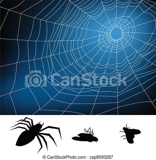 web, ragno - csp8593287