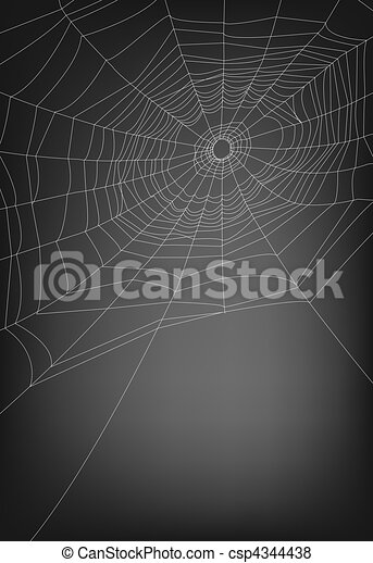 web ragno - csp4344438